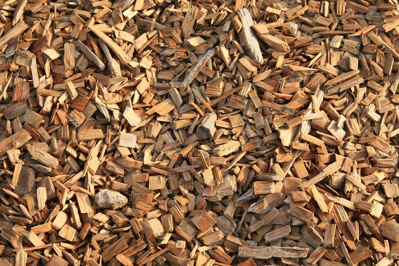 Spielturm aus Holz - ein Ratgeber zur Holzwahl